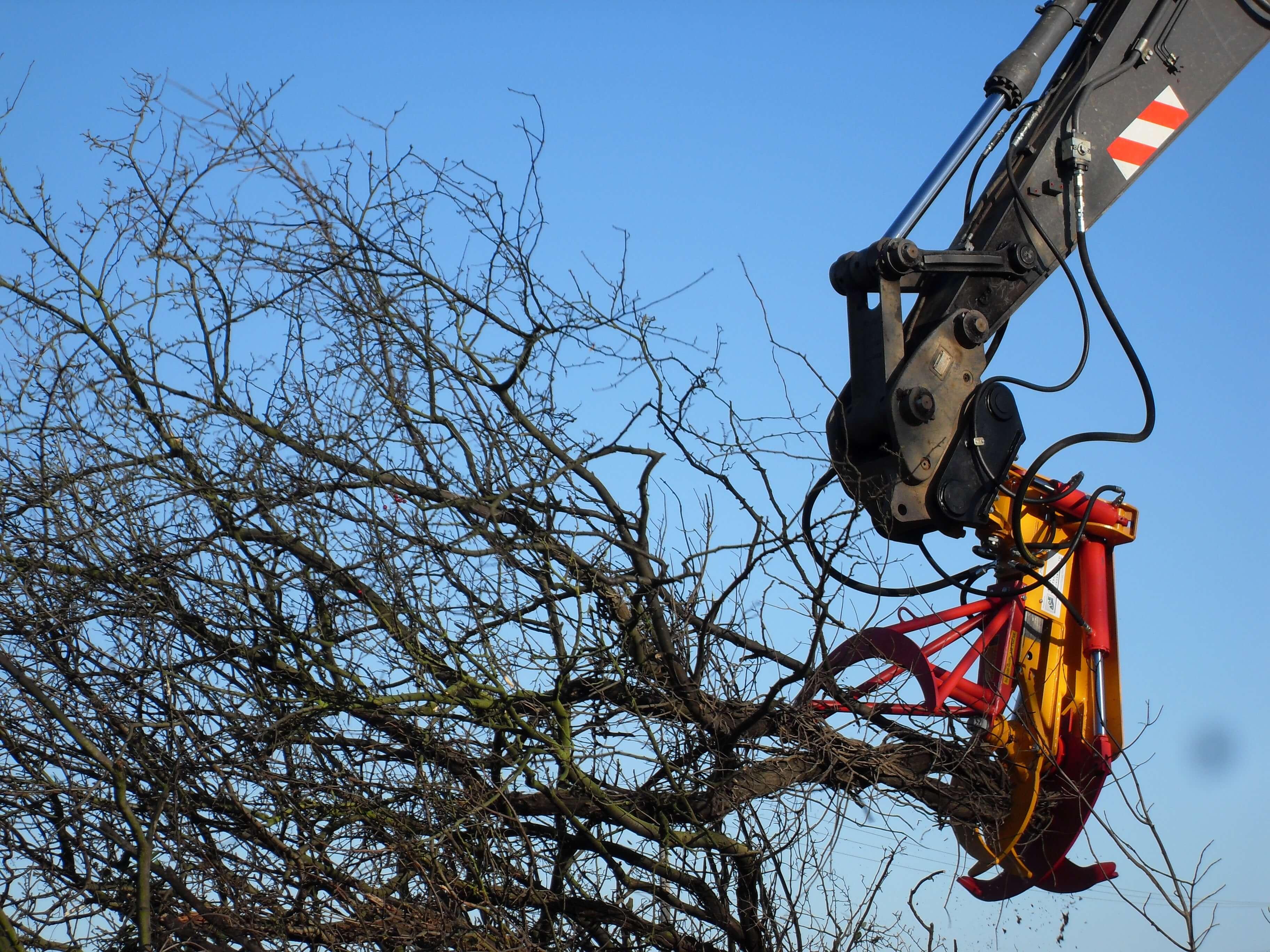 Treegrip Cutter